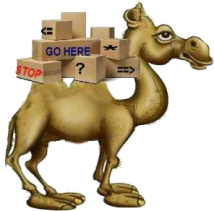 loaded camel.jpg