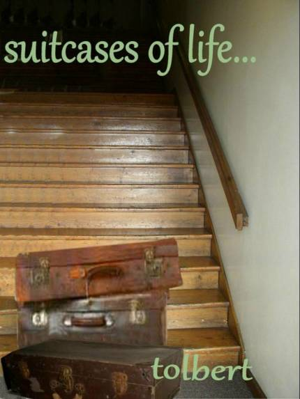 suitcases of life cover